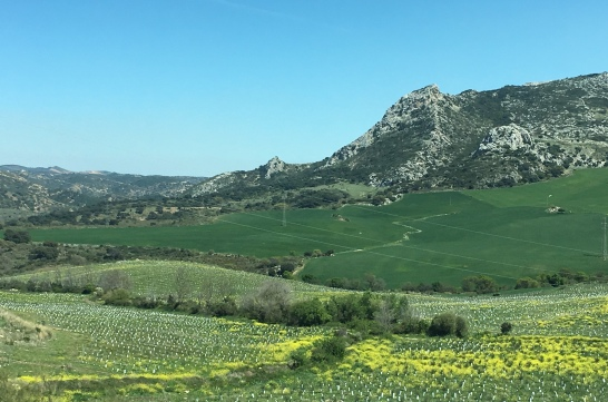 Spanish countryside
