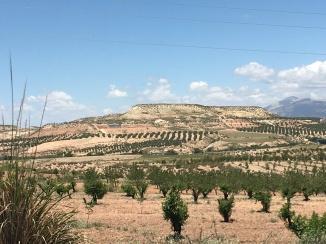 landscape shot